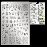 Moyra Stamping Plate 105 - Urban Gardening PRE ORDER